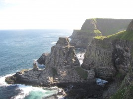 Kolonia ptaków na Rathlin Island